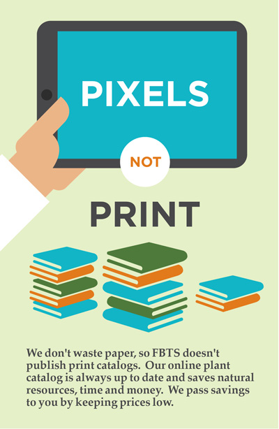 Pixels Not Print - Our Catalog With A Conscience